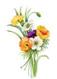 L'aquarelle fleurit dans le style classique sur un fond blanc Photo libre de droits