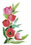 L'aquarelle fleurit dans le style classique sur un fond blanc Photographie stock