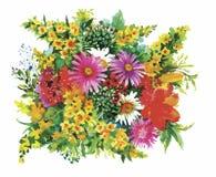 L'aquarelle fleurit dans le style classique sur un fond blanc Images libres de droits
