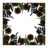 L'aquarelle fleurit l'illustration illustration de vecteur