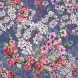 L'aquarelle fleurit la cerise et la pêche d'Apple Modèle sans couture d'ouvrage sur un fond bleu Photo libre de droits