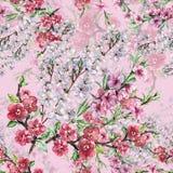 L'aquarelle fleurit la cerise et la pêche d'Apple Modèle sans couture d'ouvrage sur un fond rose Image stock