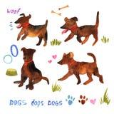 L'aquarelle mignonne a placé avec des chiens et leurs choses Esprit d'illustration Photographie stock libre de droits