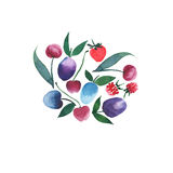 L'aquarelle sans couture juteuse lumineuse de modèle de fruits et de baies remettent le croquis Photographie stock