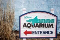 L'aquarium de Ripley Images stock