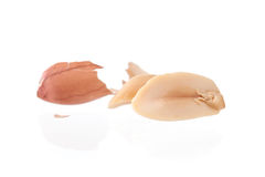 L'arachide ha isolato i colpi in studio su un fondo bianco Fotografia Stock