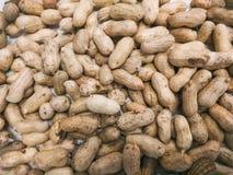 L'arachide, nourriture saine images libres de droits