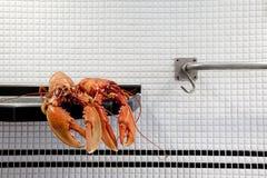 L'aragosta Fotografia Stock