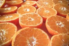L'arancia ha tagliato i mandarini su una tavola come fondo Fotografia Stock Libera da Diritti