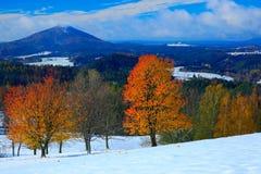 L'arancia lascia gli alberi con prima neve durante l'autunno Vista di mattina con neve dopo alba, paesaggio arancio, Bohemian di  immagini stock libere da diritti
