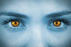 L'arancia luminosa osserva sul fronte femminile Fotografia Stock