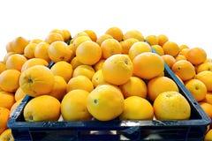 L'arancia navel, gruppo di Friut ha isolato il fondo bianco Immagini Stock