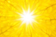 L'arancio gradice Sun/la macro/priorità bassa eccellenti Fotografia Stock