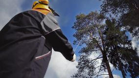 L'arboriste étire la corde jusqu'au dessus de l'arbre clips vidéos