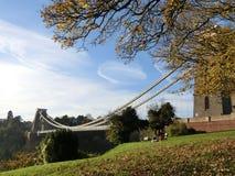 L'arbre étonnant et le pont Images libres de droits