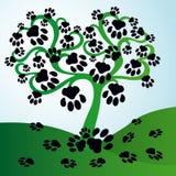 L'arbre avec des feuilles sous la forme de chat trace Photos libres de droits