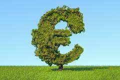 L'arbre d'argent sous forme d'euro se connectent les agains d'herbe verte Image libre de droits