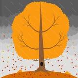 L'arbre d'automne dans la pluie et la chute laisse sur le fond un ciel orageux illustration libre de droits