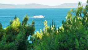 L'arbre dans la nature et le bateau en mer banque de vidéos