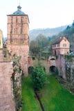 L'arbre dans la tour de ruine du château d'Heidelberg à Heidelberg Photo stock