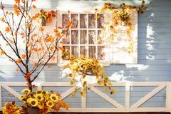 L'arbre de Marple avec l'orange part devant la maison en bois dans Flori Photos stock