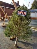 L'arbre de Noël à vendre, s'ouvrent pour des affaires Photo stock