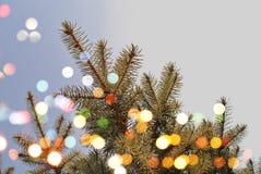 L'arbre de Noël allume le fond Image libre de droits
