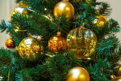 L'arbre de Noël est un arbre conifére à feuilles persistantes décoré, vrai ou artificiel, et une tradition populaire liée à image libre de droits