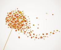 L'arbre de pissenlit d'automne laisse la composition de retour illustration stock