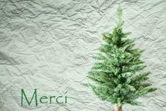 L'arbre de sapin, fond de papier chiffonné, moyens de Merci vous remercient image libre de droits
