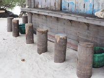 L'arbre de tronçon sur la barre de plage envoient dessus Photographie stock