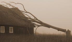 L'arbre est cassé, le toit est cassé photos libres de droits