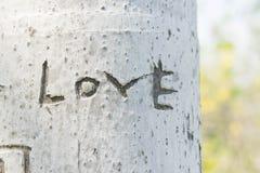 L'arbre est gravé l'amour de mot Photo libre de droits