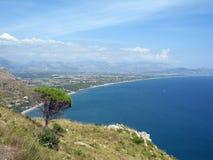 L'arbre et voient en Italie Image libre de droits