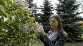 L'arbre lilas d'odeur de fille fleurit au printemps jardin banque de vidéos