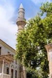 L'arbre plat de Hippocrate et la mosquée de Gazzi Hassan dans Kos Photo stock