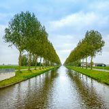 L'arbre rame sur les côtés et la réflexion de canal sur l'eau près d'Amsterdam. Pays-Bas Images libres de droits