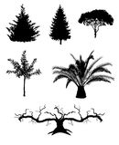 L'arbre silhouette des illustrations de vecteur Image stock
