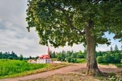 L'arbre sur le fond du palais de Priory photos stock