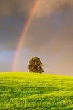 L'arc-en-ciel image libre de droits