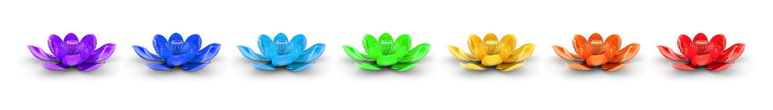 L'arc-en-ciel colore Lotus Flowers illustration de vecteur