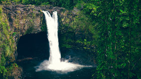 L'arc-en-ciel tombe dans Hilo sur la grande île d'Hawaï Images stock
