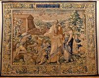 L'arche de Noé de tapisserie, doro de Ca, Venise, Italie Photos libres de droits