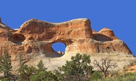 L'arco del tunnel incurva il parco nazionale Fotografia Stock