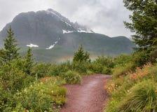 L'arcobaleno emette luce mentre la traccia taglia da parte a parte i fiori del pennello indiano Fotografia Stock