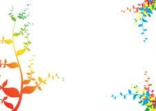 L'arcobaleno pianta la carta Immagine Stock