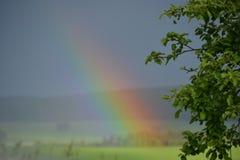 L'arcobaleno un giorno del sole e del prato Immagini Stock
