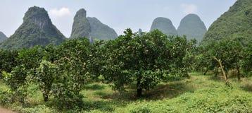 L'area intorno alla cittadina Yangshuo nella regione autonoma del Guangxi Zhuang in Cina immagini stock libere da diritti