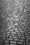L'area pavimentata con la pietra Fotografie Stock Libere da Diritti