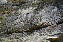 L'arenaria oscilla nel Bohemian Svizzera, controllo fotografia stock